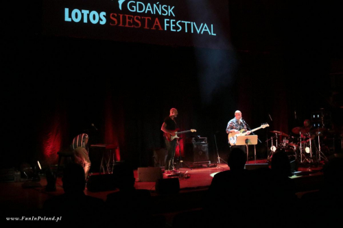IMG 6649 Yami Siesta Festival 2020